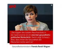 Die SPÖ ist am Ende das letzte Aufzeigen der Pamela Rendi Wanger;
